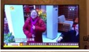 知心红娘2018年1月5号接受都市频道《都市晚间》栏目采访